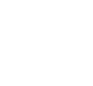 12Proiecte